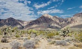 Parc national de canyon rouge de roche, Nevada Image libre de droits