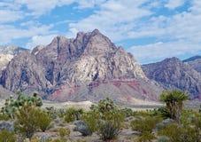 Parc national de canyon rouge de roche, Nevadak Image stock