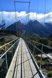 Parc national de crochet de Mt, Nouvelle-Zélande Photo libre de droits