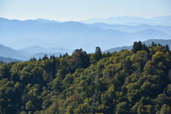 Parc national de Great Smoky Mountains au Tennessee Photos stock