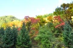 Parc national de Jiuzhaigou situé dans le nord de la province de Sichuan dans la région du sud-ouest de la Chine images libres de droits