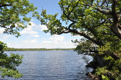 Parc national de Killarney, Irlande Images stock