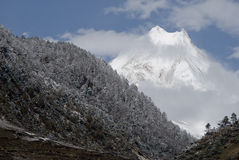 Parc national de l'Himalaya gentil Manaslu Népal Photo stock