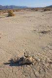 Parc national de la Californie, Death Valley, dunes de boue Photo stock