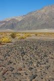 Parc national de la Californie, Death Valley, le désert en pierre Image libre de droits