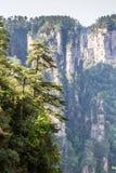 Parc national de la Chine, Zhangjiajie photos libres de droits