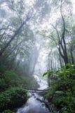 Parc national de la Thaïlande Doi Intanon de nord de ChiangMai avec la diversité biologique et stupéfiante pour le tourisme images libres de droits