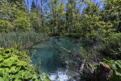 Parc national de lacs Plitvice - Croatie Photographie stock