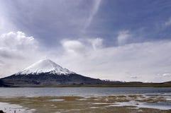 Parc national de Lauca chile Photographie stock libre de droits