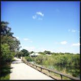 Parc national de marais Photographie stock