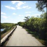 Parc national de marais Photo stock