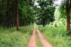 Parc national de Nagerhole dans l'Inde Photos stock