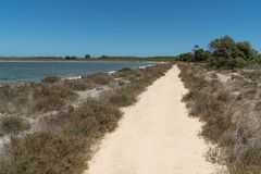 Parc national de Nambung, Australie occidentale Photo libre de droits