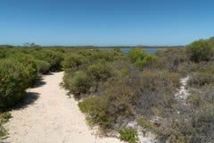 Parc national de Nambung, Australie occidentale Images stock