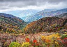 Parc national de Nikko images libres de droits