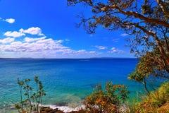 Parc national de Noosa, Australie Images libres de droits