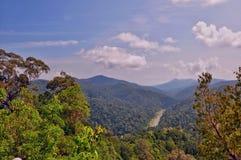 Parc national de Pahang, Malaisie Image stock