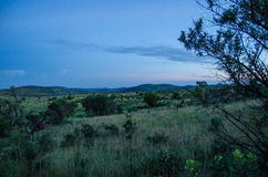 Parc national de Pilanesberg Images stock