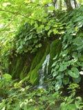 Parc national de Plitvice Photo libre de droits