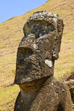 Parc national de Rapa Nui Images stock