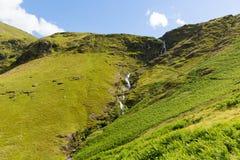 Parc national de secteur de lac de cascade de Moss Force Cumbria R-U un beau jour d'été de ciel bleu Photographie stock libre de droits