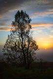 Parc national de Shenandoah Photo stock