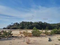 Parc national de Similajau Photos stock