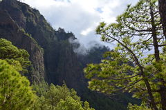 Parc national de Taburiente Photo libre de droits