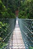 Parc national de Temburong d'Oscillation-pont Photos stock