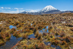 Parc national de Tongariro de paysage de Ruapehu de bâti, Nouvelle-Zélande photo stock