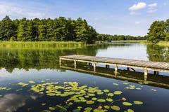 Parc national de Wigry de lac poland photographie stock libre de droits