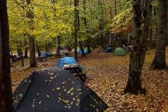 Parc national de Yedigoller Photos stock
