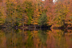 Parc national de Yedigoller Images stock