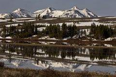 Parc national de Yellowstone Photographie stock
