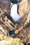 Parc national de Yellowstone Image stock