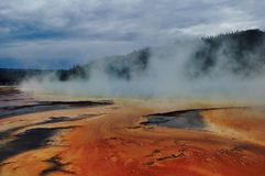 Parc national de Yellowstone Photographie stock libre de droits