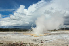 Parc national de Yellowstone de geyser de bateau à vapeur Image stock