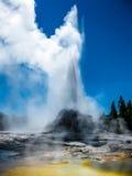 Parc national de Yellowstone de geyser de château Photographie stock