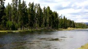 Parc national de Yellowstone de rivière de Firehole banque de vidéos