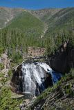 Parc national de Yellowstone, Etats-Unis photos stock