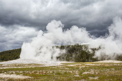 Parc national de Yellowstone, Utah, Etats-Unis Images libres de droits