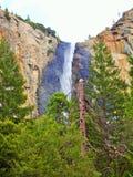 Parc national de Yosemite Photos libres de droits