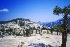 Parc national de Yosemite Photographie stock libre de droits