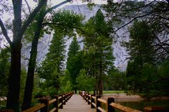 Parc national de Yosemite Photographie stock libre de droits