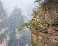 Parc national de Zhangjiajie photo stock