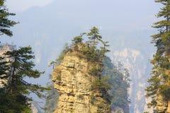 Parc national de Zhangjiajie photos stock