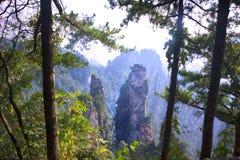 Parc national de Zhangjiajie en Chine Photographie stock libre de droits