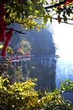Parc national de Zhangjiajie en Chine Image stock