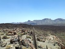 Parc National del Teide immagine stock libera da diritti