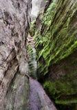 Parc national des roches d'Adrspach-Teplice Ville de roche images stock